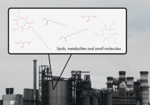 lipids, metabolites, and small molecules (500 x 350)
